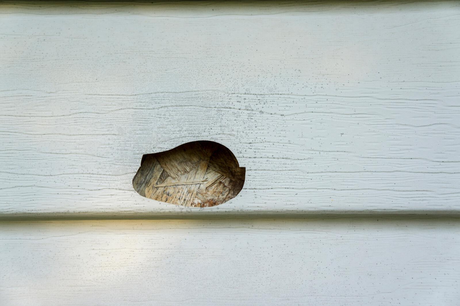 Did Winter Damage Your Vinyl Siding Columbus Windows